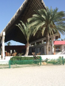 Picture of Diemijos