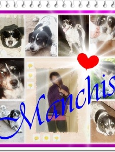 Foto de Manchis1