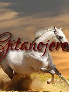 Picture of Gitanojerez