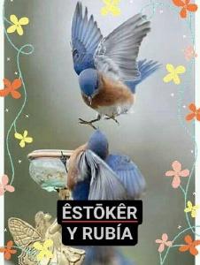 Foto de Estoker1