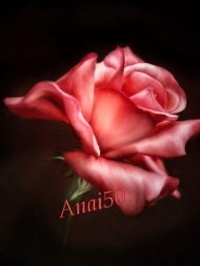 Foto de Anai50