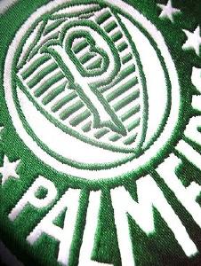 Foto de Palmeiras19141
