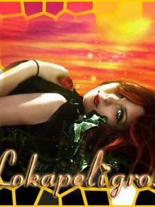 Foto de Lokapeligrosa