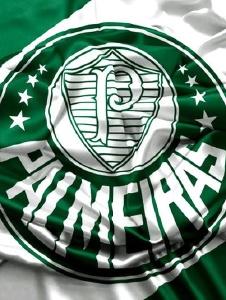 Foto de Lvmpalmeiras