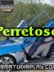 Picture of Perretoso