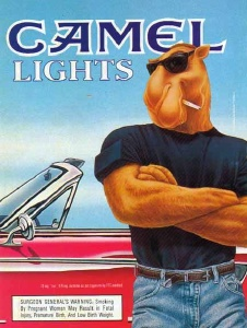 Picture of Camel656