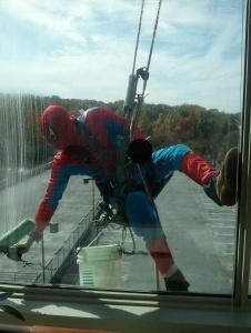 Picture of Spidernero