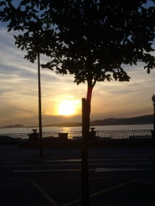 Foto de Gatokan2