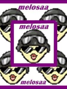 Foto de Melosaa