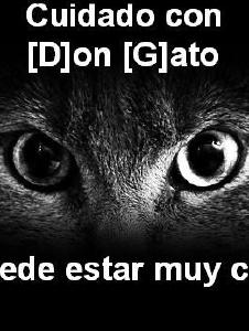 Foto de Dongato88